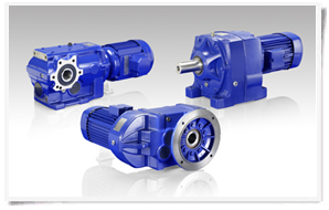 S4 Series Inclined Gear Motor