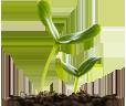 南北農業種子
