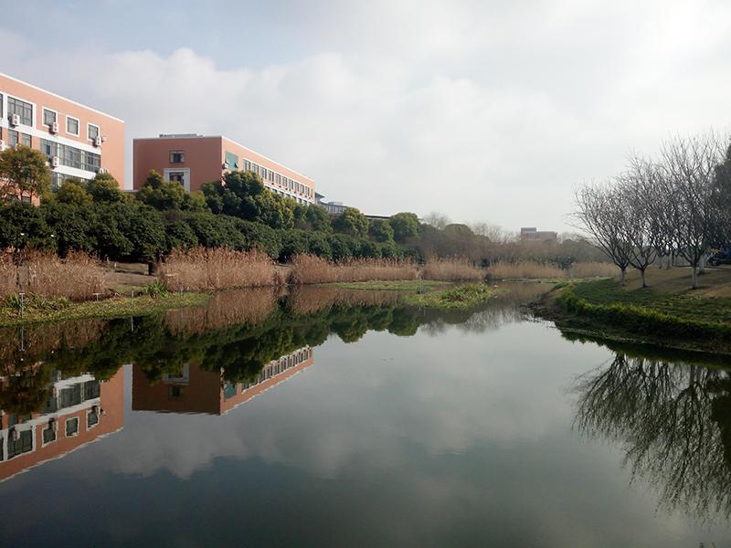 杭州下沙高教東公園水生態治理工程