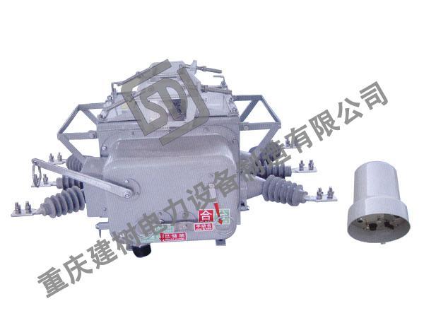 ZW20A-12/T100[630]-25戶外高壓交流(分界)真空