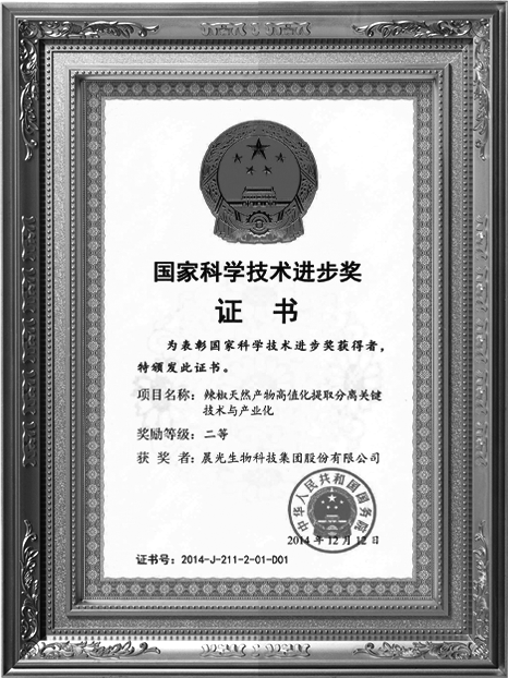 国家科学技术进步奖(一)